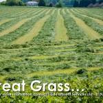 Biosolids fertiliser grass silage field rowed up